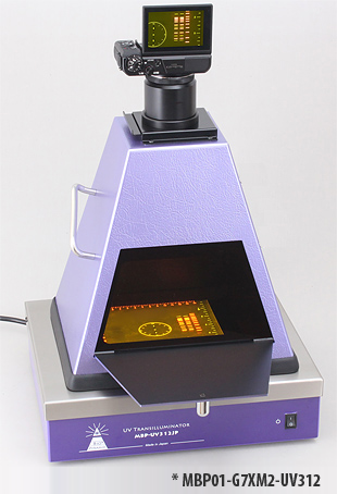 fluorescence excitation LED transmitted light for stereo microscope